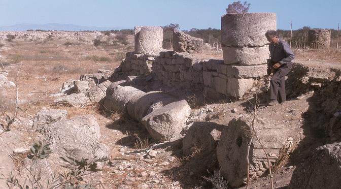 SalamiNe : Les archives d'une fouille archéologique  à Chypre (1965-1974) à l'ère numérique